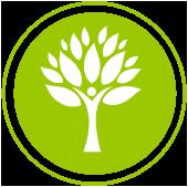 Ambiental mas verde
