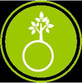 Sostenible mas verde